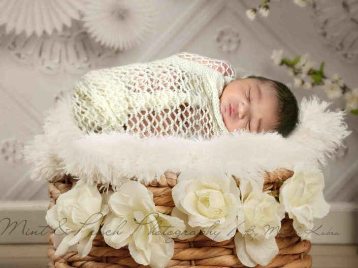 Newborn White Basket photography