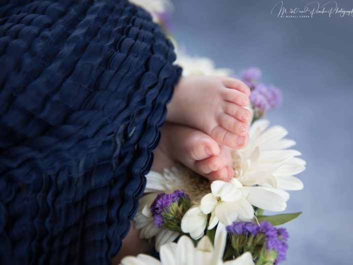 Baby feet photography
