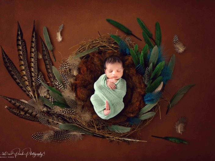 Newborn wrapped photoshoots
