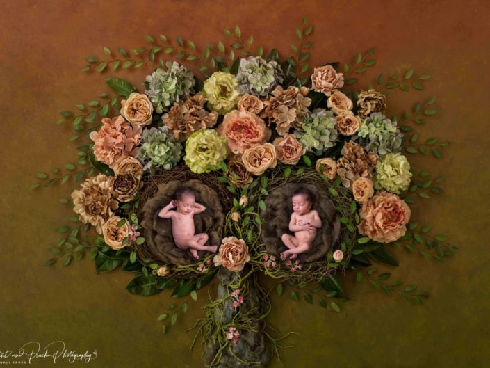Twins newborn floral shoot